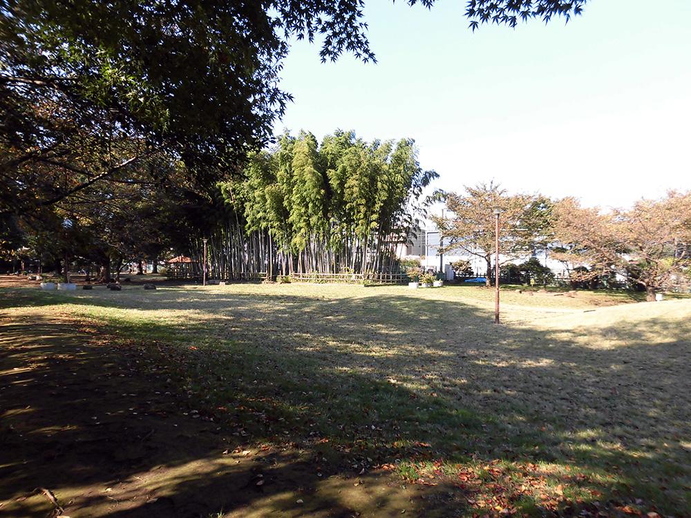 たけのこ公園2